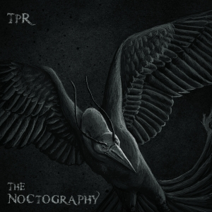 noctography
